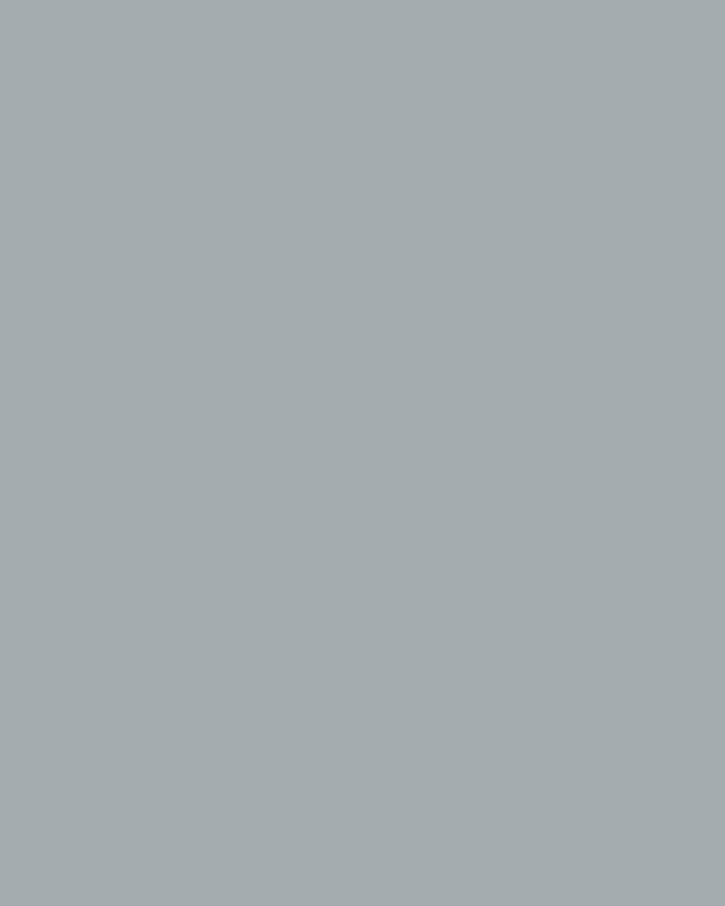 406 Gray Canvas Backdrop 8x16