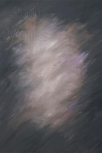 Amberly Canvas Backdrop | Studio Dynamics